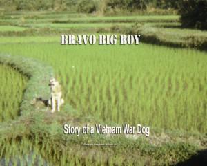 bravo big boy